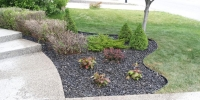 assorted perennials in a bed with rundle rock and plastic edging