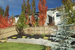 Allen block retaining with black mulch beds with assorted perennials and trees