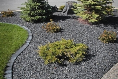 Charcoal cobble mow brick boarder with 20mm Rundle bed with evergreen trees and shrubs