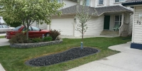 Borders - finished mow brick border with gravel and tree