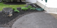 Borders - front bed rundle and black mulch