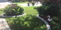 Prefab-Curbing-around-Garden-Beds