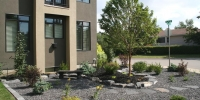 borders - small rundle boulder retaining wall with 22 mm limestone and black mulch beds with assorted shrubs and perennials