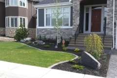Borders - mow brick with black mulch beds 2