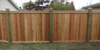 Fences - cedar friendly neighbour style fence with pressure treated posts with post caps