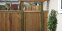 Fences - decorative cedar arbor and gate with friendly neighbour style fence with pressure treated posts