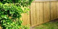 Fences - pressure treated fence