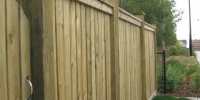 Fences - pressure treated fences with post caps and rounded gate
