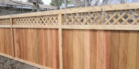 Fences - cedar lattice top estate fence