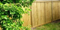 Fences - pressure treated fence