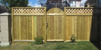 Fences - pressure treated lattice topped estate style fence with rounded gate