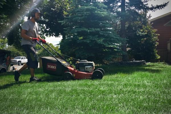 crew cutting grass