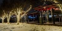 assiniboine_lights_0014_Earls-South-Lights-5-of-6