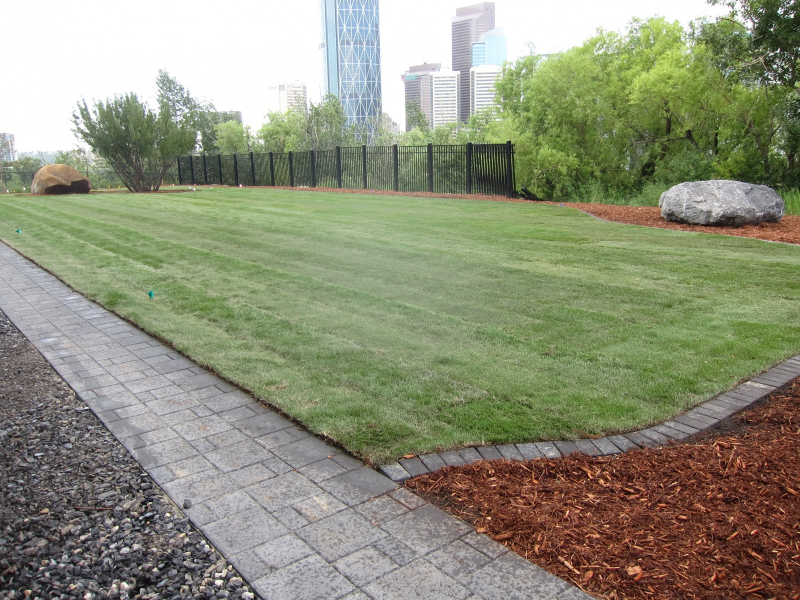 lawn after spring clean-up