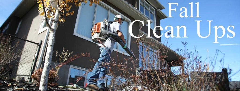 Fall Clean Ups Calgary