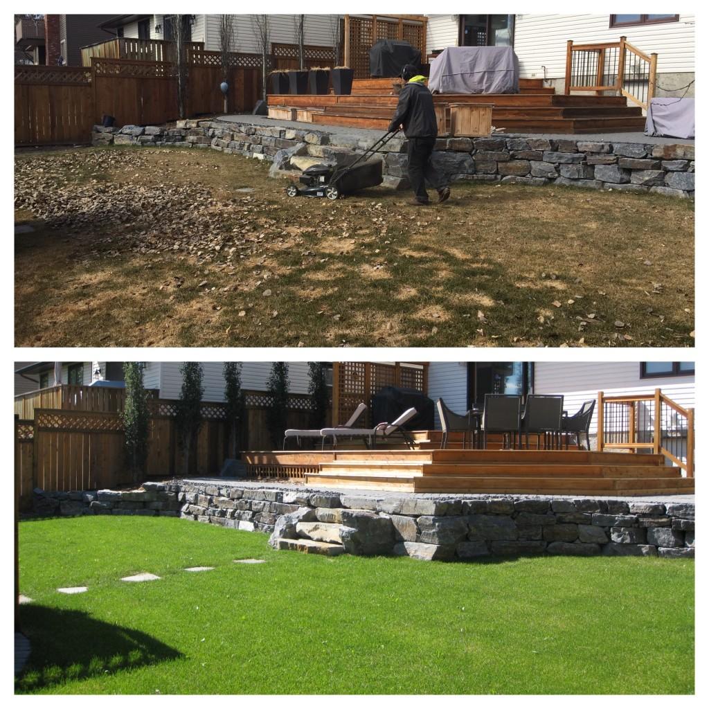 Benefits Spring Yard Clean Up