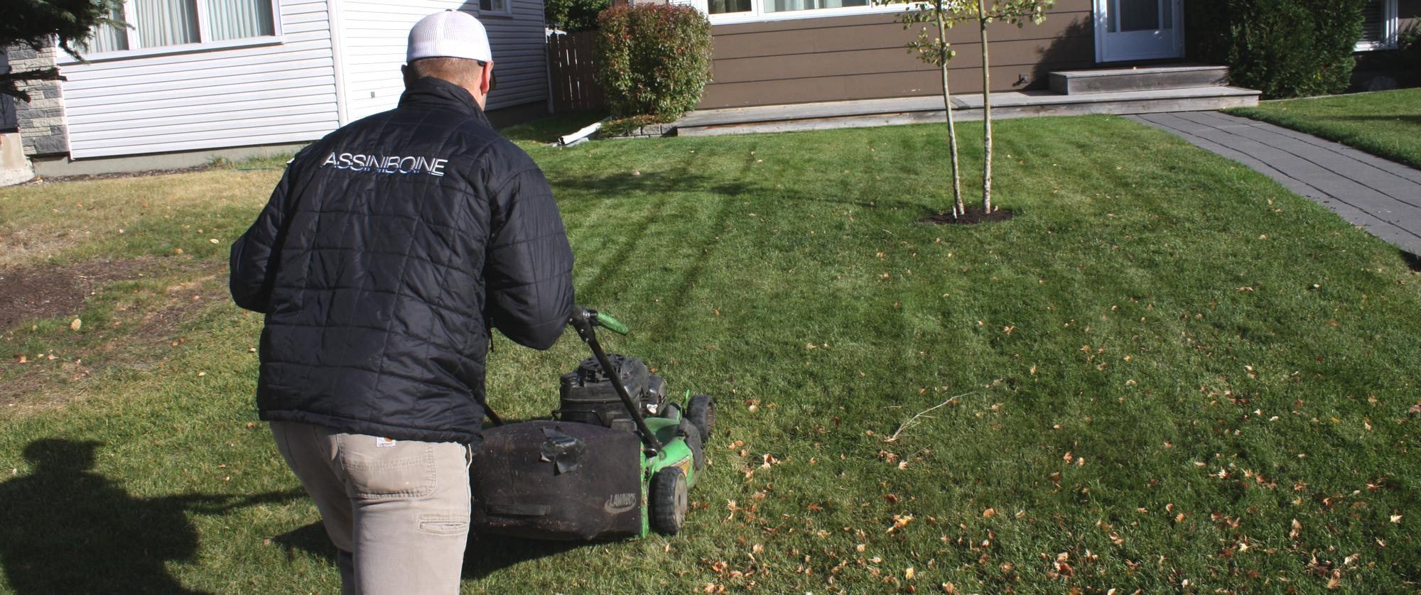 Lawn Care Weekly Cut